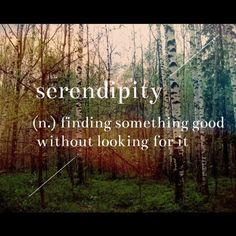 Serendipity. My favorite word <3