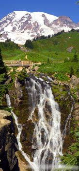 Top Ten Things To Do at Mt. Rainier National Park