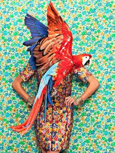 Fashion and a Parrot