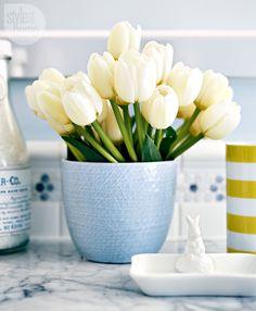 Cheerful countertop accessories {PHOTO: Michael Graydon}