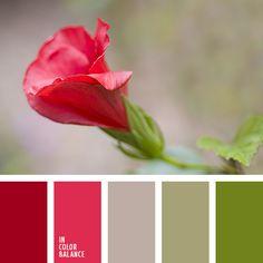 Цветовая палитра №1365