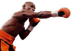 Che guantoni devi usare se fai sport da combattimento?. - Expert Fighting