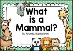 This freebie would be a perfect complement if you are teaching your students about Australian animals and the three types of mammals, placental, marsupial and monotreme.Activities included:* What is a Mammal? Sorting mammals: placental,marsupial, monotreme* What Do You Know About Mammals? (missing words)* Mammals word searchEnjoy!