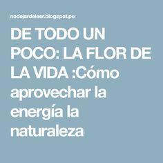 DE TODO UN POCO: LA FLOR DE LA VIDA :Cómo aprovechar la energía la naturaleza