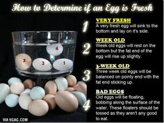 Something that might help some of the cooks out there