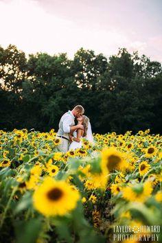 Wedding photos in sunflower field / southern summer wedding