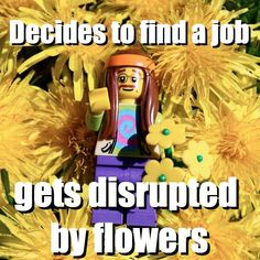 Decides to find a job - gets disrupted by flowers via brickmeme.com