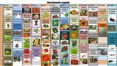 Herb Garden, Infographic, December, Herbs, Green, Plants, Vegetables, February, Infographics