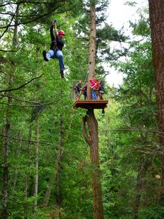 Ziplining in San Juan Islands (Seattle)