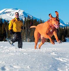 Snowshoeing In Central Oregon | Travel Oregon