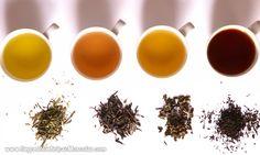 10 Chás Para Você Emagrecer Destaque Para Chá De Hibisco → http://www.segredodefinicaomuscular.com/10-chas-para-voce-emagrecer-destaque-para-cha-de-hibisco/ #Secar