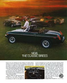 MGB ad . My first car was a 1979 Limited edition British racing green with camel interior. I wish I would have held on to it.