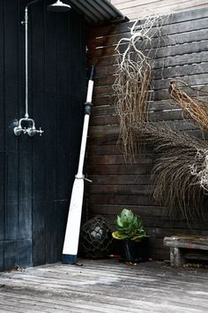 Seed pods to hang on black weatherboard wall out front