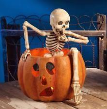 Creeping Skeleton Hiding in Pumpkin - Large Bethany Lowe Halloween Jack-O-Lantern Centerpiece bethany lowe halloween Halloween Jack, Halloween Skeletons, Holidays Halloween, Halloween Pumpkins, Halloween Crafts, Halloween Costumes, Halloween Window, Halloween Labels, Halloween Halloween