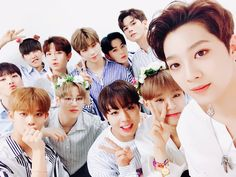 All I Wanna Do Wanna One☝️| 워너원 | Kang Daniel | Park Jihoon | Park Woojin | Bae Jinyoung | Lee Daehwi | Hwang Minhyun | Kim Jaehwan | Ha Sungwoon | Ong Seongwoo | Lai Kuanlin | Yoon Jisung | 1X1=1 | Wannable | 워너블