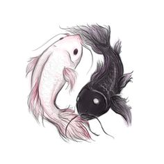 pink and black koi - Yin Yang Yin Yang Tattoos, Pisces Fish Tattoos, Clever Tattoos, Small Tattoos, Jing Y Jang, Yin Yang Fish, Pisces Constellation Tattoo, Watercolor Fish, Future Tattoos