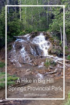 Friday morning I went for a hike in Big Hill Springs Provincial Park. I didn't have any classes, so I wanted to make sure I took advantage of the beautiful weather and spend some time outdoors. If you follow me