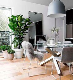 BUENA PLANTA  Las grandes palmeras y ficus están de moda. Con un forndoso ejemplar junto a la ventana podemos reforzar un ambiente sofisticado.