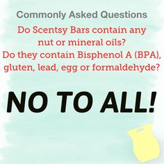 Do Scentsy Bars contain any nut or mineral oils? Scented Wax Warmer, Wax Warmers, Social Marketing, Mineral Oil, Smell Good, Scentsy, Natural Oils, Jessie, Egg