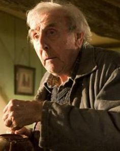 Eric Sykes as Frank Bryce the caretaker of the Riddle family home in Harry Potter and the Goblet of Fire Harry Potter Goblet, Harry Potter Books, Harry Potter Universal, Harry Potter World, Severus Snape, Draco Malfoy, Cho Chang, Lavender Brown, Bellatrix Lestrange