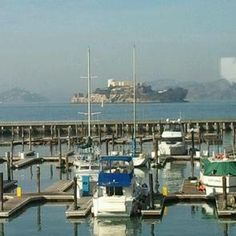 Fog Harbor Fish House View