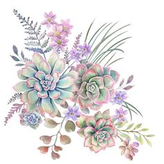 Cactus succulent tattoo flower New ideas Succulents Wallpaper, Succulents Drawing, Watercolor Succulents, Watercolor Flowers, Watercolor Paintings, Succulents Painting, Succulents Art, Watercolor Tattoo, Indoor Succulents