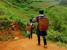 TIPS FOR TREKKING IN SAPA, VIETNAM. #trekking #hiking #vietnam #sapa
