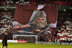 Denmark Vikings
