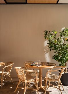 Restaurante Spot Mallorca.  Interior Design Tarruella Trenchs Studio  #restaurant #encompañiadelobos #mallorca #interiordesign #tarruellatrenchs