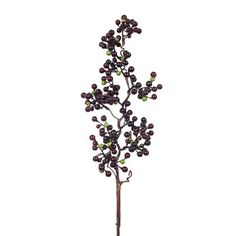 Berry Branch Burgundy  48cml Berry, Burgundy, Plants, Red, Berries, Flora, Plant