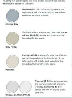 Candice Olson's 5 Go-to Colors - Benjamin Moore