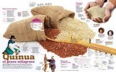 Quinoa #comida #peru