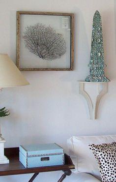 framed sea fan