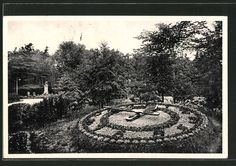 old postcard: AK Komotau / Chomutov, Blumenuhr im Park
