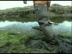 Bill Nye the Science Guy - Wetlands - YouTube.mov