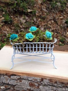 Miniature white planter with real moss and paper blue flowers for fairy, gnome, hobbit, dollhouse or garden  $15.00 USD