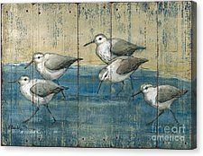 Birds Canvas Print featuring the painting Sandpipers Oil Distressed by Paul Brent
