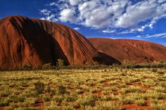 uluru green and gold spinifex Green And Gold, Monument Valley, Tumblr, Nature, Naturaleza, Off Grid, Natural, Mother Nature, Scenery