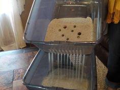 Scoop free No mess Money saving Side sift Cat litter box