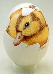 beschilderde eieren - Google zoeken
