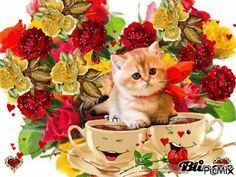 Good Morning I love you Kitten Love, I Love Cats, Kittens And Puppies, Cats And Kittens, Christmas Landscape, Emoji Symbols, Gifs, Glitter Graphics, Jolie Photo