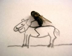 Dead Fly Art. To say only that you are drunk, Pinterest, would be avoiding a much, much deeper issue.