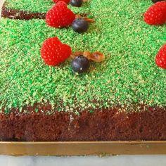 Chocolate cake covered with pistachio crush. #glutenfreelife #glutenfree #raspberries #ケーキ #glutenfreeliving #ケーキ屋サン #foodporn #カフェ #cakestagram #foodies #cakecakecake #foodartstyles_gf #foodstamping #foodie #glutenfreevegan #afternoontea #instadessert #homemadecake #f52gram #coffeetime #オヤツ #foodgasm #eeeeeats #cafe #f52grams #pistachio #chocolatecake #fitfood #vegancake #chocolatebrownies by gingernthings