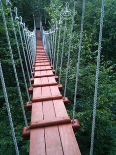 CLIMB Works Canopy Tour- the ultimate treetop #Zipline adventure. #Gatlinburg #SmokyMountains http://www.diamondrentals.com/