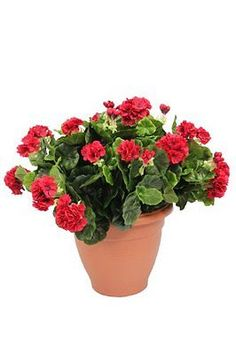 #Artificial large red #geranium flower plant bush #shrub in container patio plant,  View more on the LINK: http://www.zeppy.io/product/gb/2/192018896423/