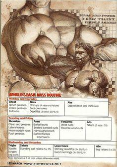 Arnold training