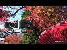 15 Best FujiFilm X 100 F images | Fujifilm, Fuji camera