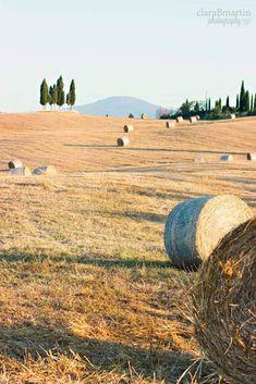 Toscana_claraBmartin09