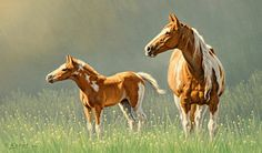 Horse Painting - Pinto Mare And Colt by Paul Krapf