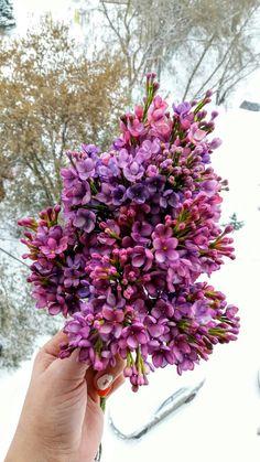 Natali Flowers | ВКонтакте